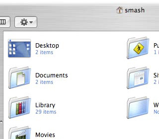 "Preview of these Finder ""View Options"" in a folder"